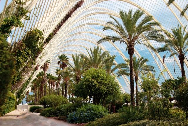 Sitios para visitar en Valencia gratis